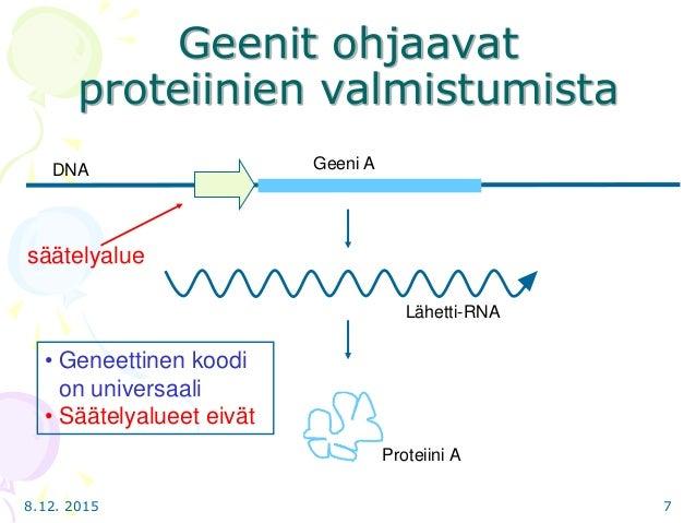 Geneettinen Koodi
