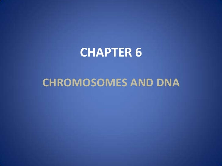 CHAPTER 6CHROMOSOMES AND DNA