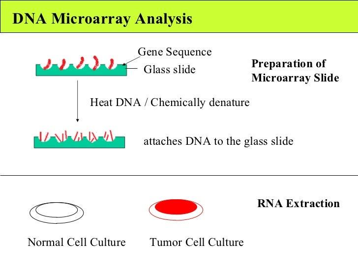 Gene expression profiling i