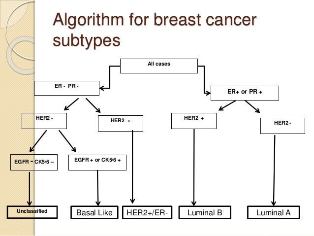 What is egfr in breast cancer