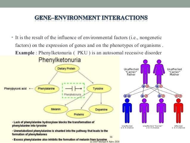 Gene interaction ppt
