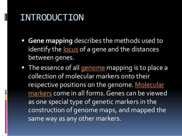 gene mapping ppt