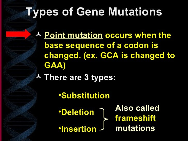 Essay on Mutation: Top 10 Essays on Mutation