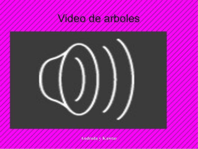 Andrada y Kawtar Video de arboles