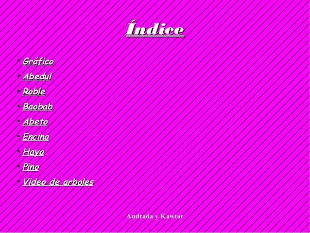 Andrada y Kawtar ÍndiceÍndice ● GráficoGráfico ● AbedulAbedul ● RobleRoble ● BaobabBaobab ● AbetoAbeto ● EncinaEncina ● Ha...