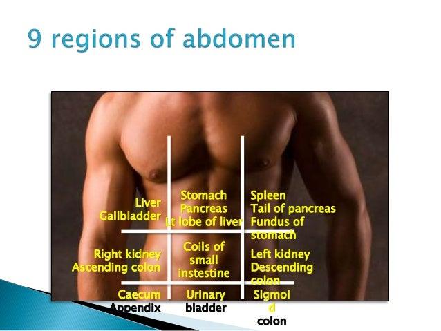 Abdominal Pain 10671658