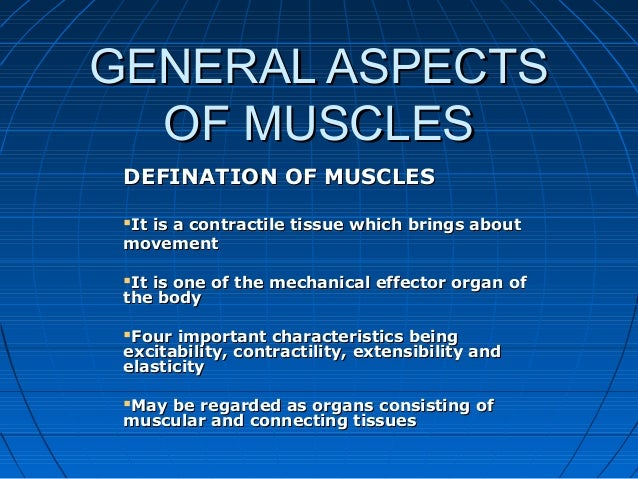 GENERAL ASPECTSGENERAL ASPECTS OF MUSCLESOF MUSCLES DEFINATION OF MUSCLESDEFINATION OF MUSCLES It is a contractile tissue...