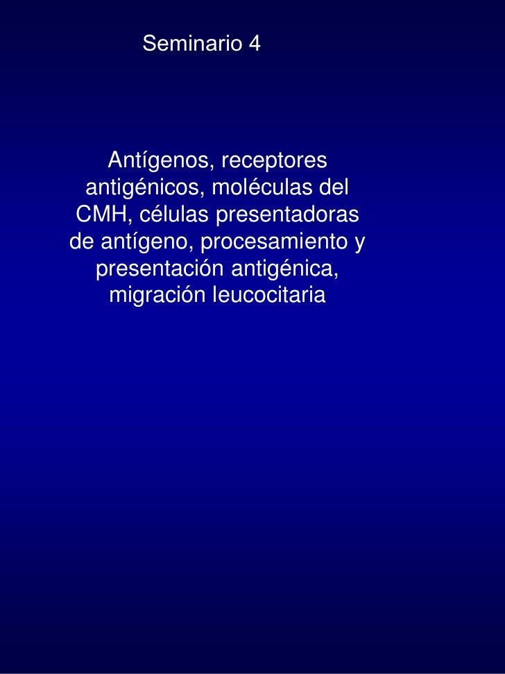 Seminario 4         Antígenos, receptores   antigénicos, moléculas del  CMH, células presentadoras de antígeno, procesamie...