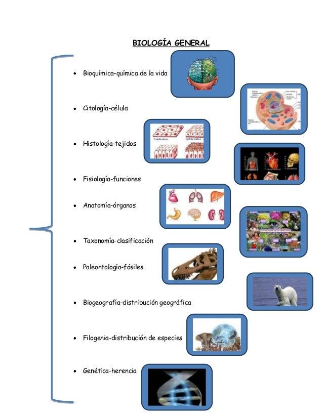 A biotecnologia como instrumento para o avanço da medicina 1