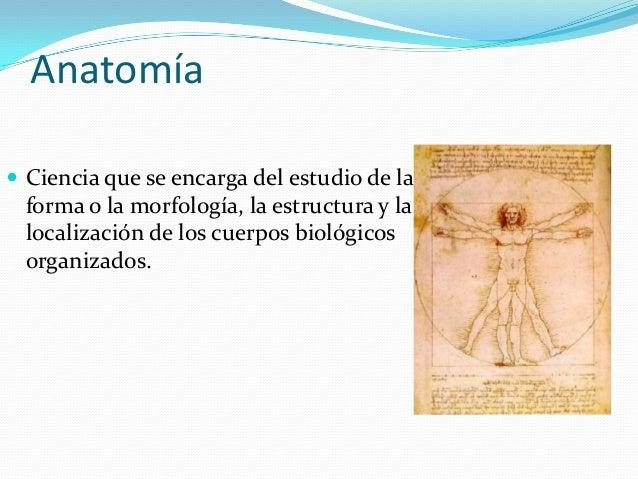 Generalidades de-anatomia
