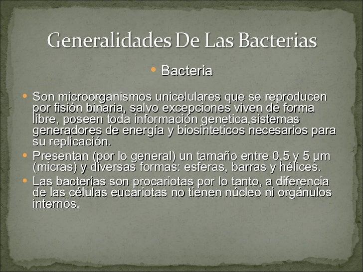 Generalidades De Las Bacterias ( Gram Positivas , Estreptococos Y Estafilococos) Slide 2