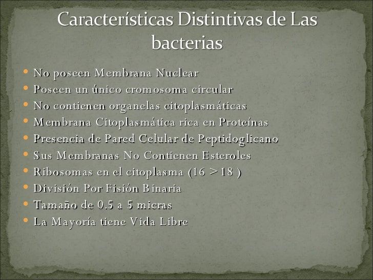 Generalidades De Las Bacterias ( Gram Positivas , Estreptococos Y Estafilococos) Slide 3