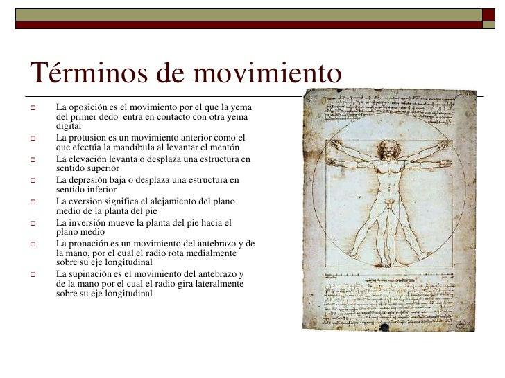 Generalidades anatomicas
