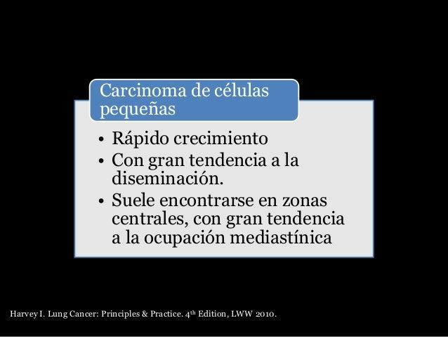 Tumor carcinoide Histología: • Células poligonales redondas, cromatina fina, nucléolos pequeños • Figuras mitóticas escasas