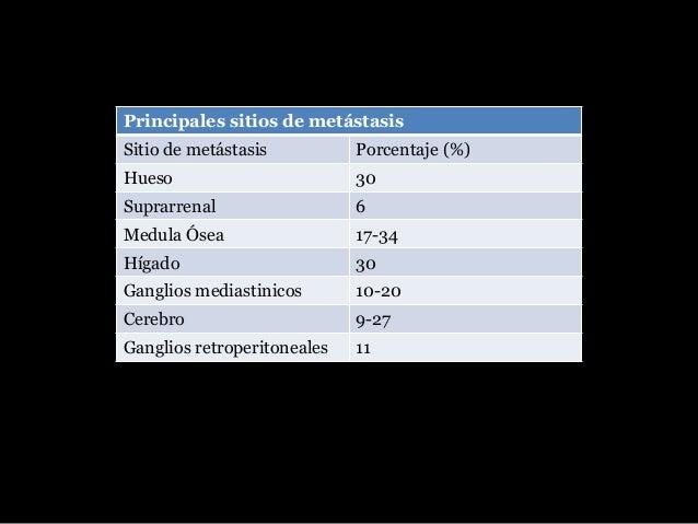 • La evidencia clínica de una lesión sospechosa • Evaluación riego epidemiológico (edad, tabaquismo, AHF, exposición ocupa...