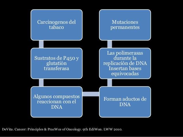 Carcinogenos del tabaco Sustratos de P450 y glutatión transferasa Algunos compuestos reaccionan con el DNA Forman aductos ...