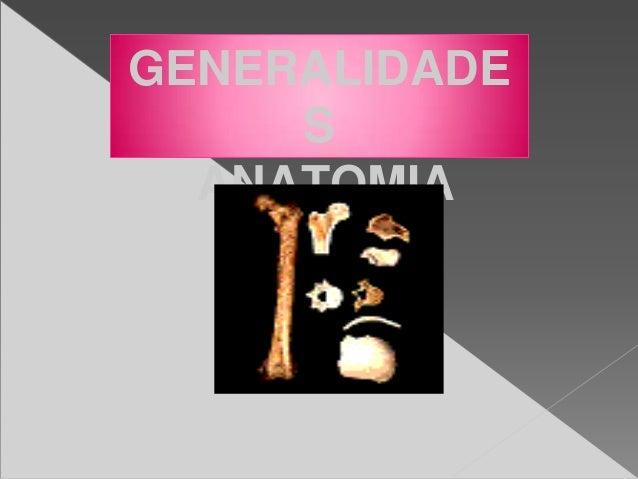 GENERALIDADE S ANATOMIA