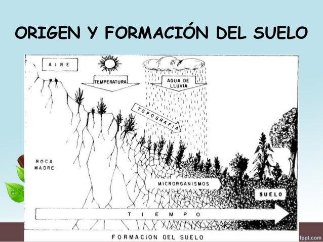Generalidades del suelo agr cola for Formacion de los suelos