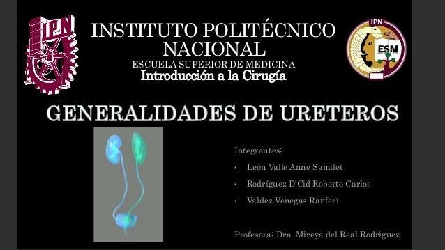 Integrantes: • León Valle Anne Samilet • Rodríguez D'Cid Roberto Carlos • Valdez Venegas Ranferi Profesora: Dra. Mireya de...