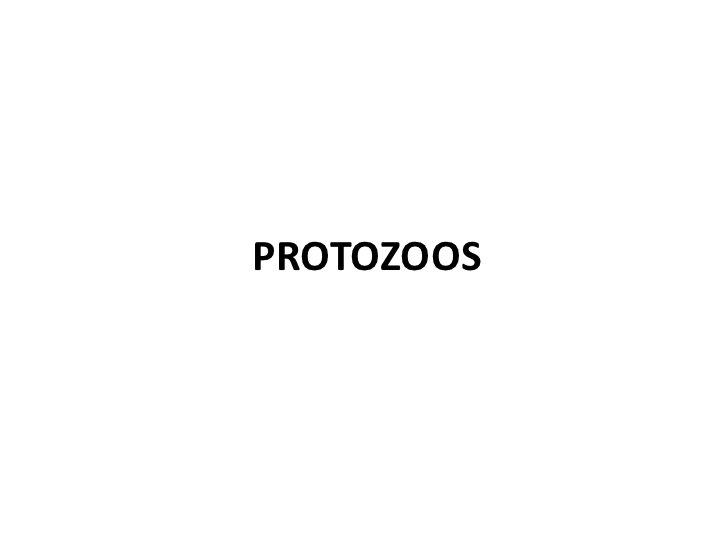 Parasitosis tisular/sanguinea<br />PROTOZOOS<br />Malaria<br />Tripanosomiasis<br />Leishmaniasis<br />Toxoplasmosis<br />...