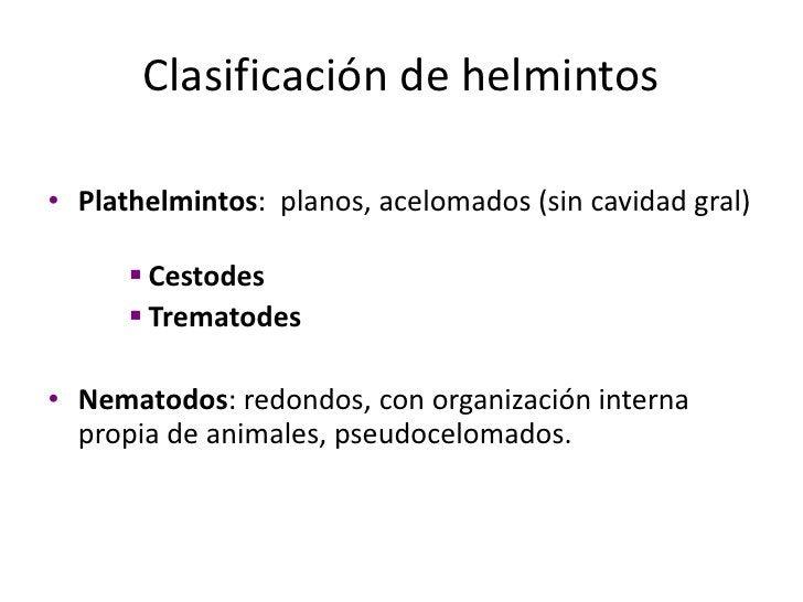 Locomoción<br />Rhizopodea -> pseudópodos<br />Zoomastigophorea -> flegelos<br />Ciliophora -> cilios<br />Sporozoea -> in...