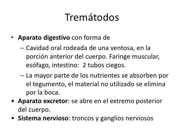 Cestodos <br />Exclusivamente parásitos.<br />Se conocen como tenias; tamaño variable.  <br />Carecen de cutícula.<br />No...