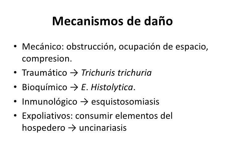 Designar enfermedad -> terminación asis / iasis</li></li></ul><li>CLASIFICACIÓN<br />Diversas formas de clasificar:<br />E...