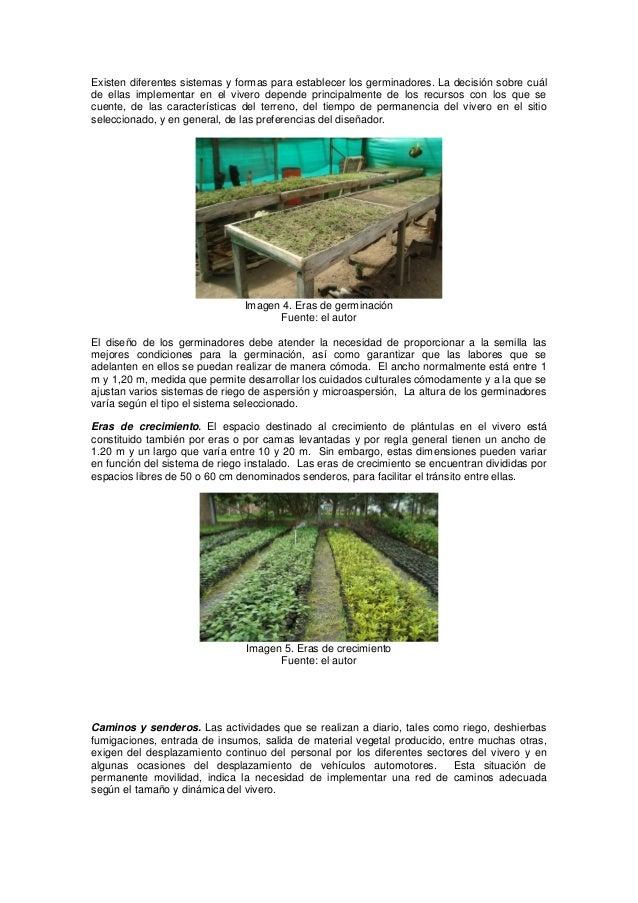 Generalidades sobre viveros for Caracteristicas del vivero