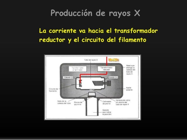 Producción de rayos X La corriente va hacia el transformador reductor y el circuito del filamento