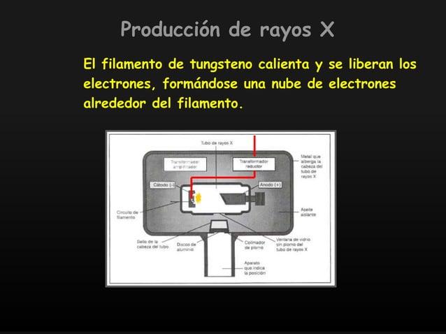 El filamento de tungsteno calienta y se liberan los electrones, formándose una nube de electrones alrededor del filamento....