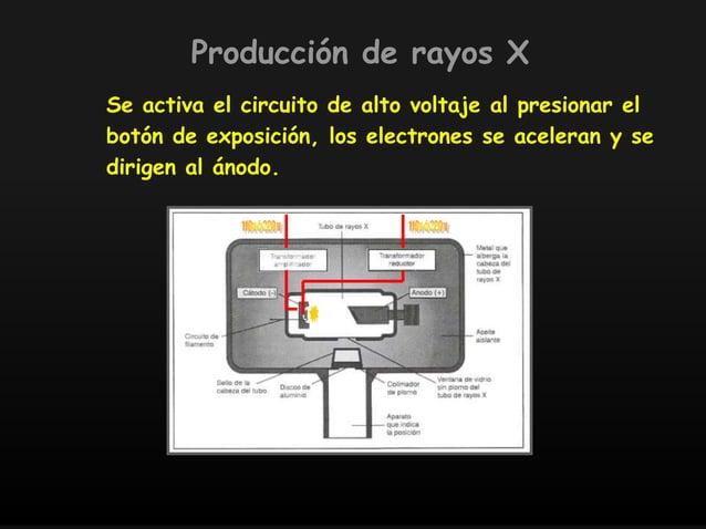 Se activa el circuito de alto voltaje al presionar el botón de exposición, los electrones se aceleran y se dirigen al ánod...