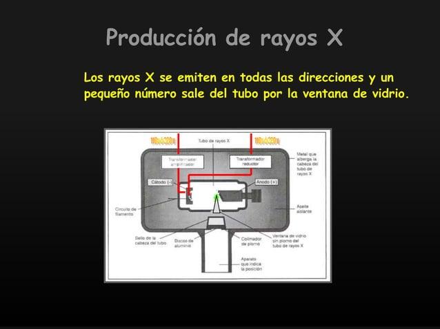Los rayos X se emiten en todas las direcciones y un pequeño número sale del tubo por la ventana de vidrio. Producción de r...