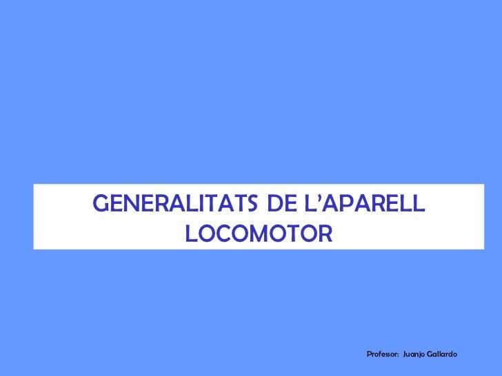 GENERALITATS DE L'APARELL      LOCOMOTOR                    Professor: Juanjo Gallardo