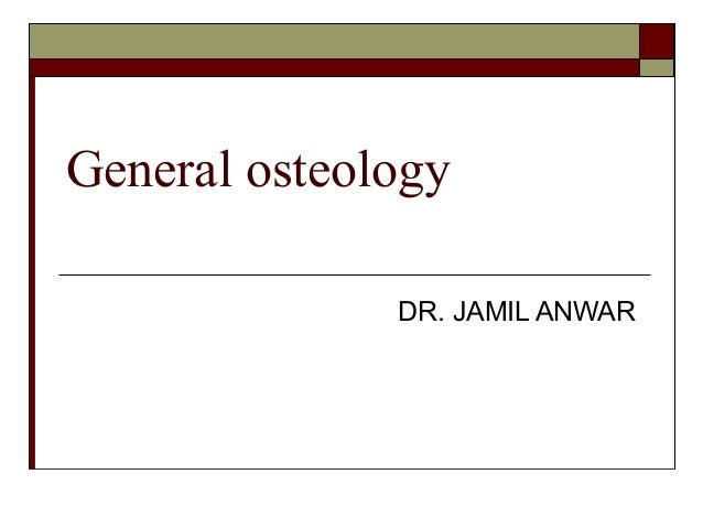 General osteology              DR. JAMIL ANWAR