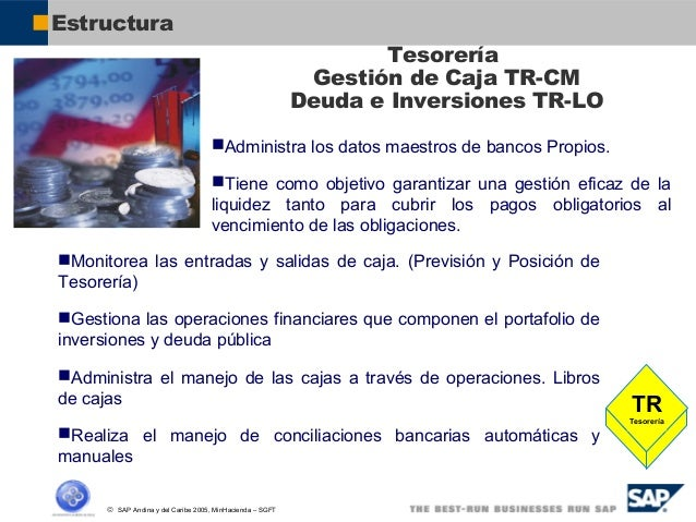General Overview Sap Todos Los Modulos