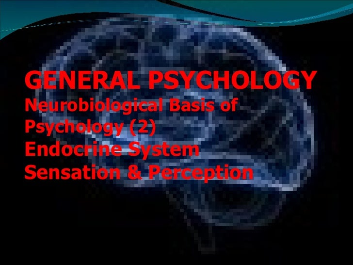 GENERAL PSYCHOLOGY Neurobiological Basis of Psychology (2)  Endocrine System Sensation & Perception