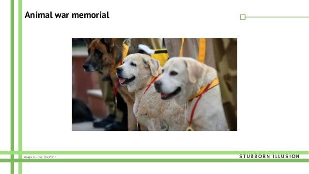 Animal war memorial STUBBORN ILLUSIONImage source: The Print