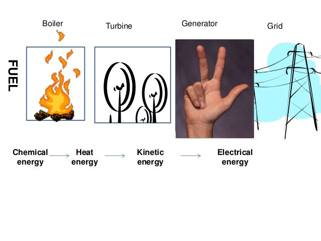 How To Make Electricity From Plants