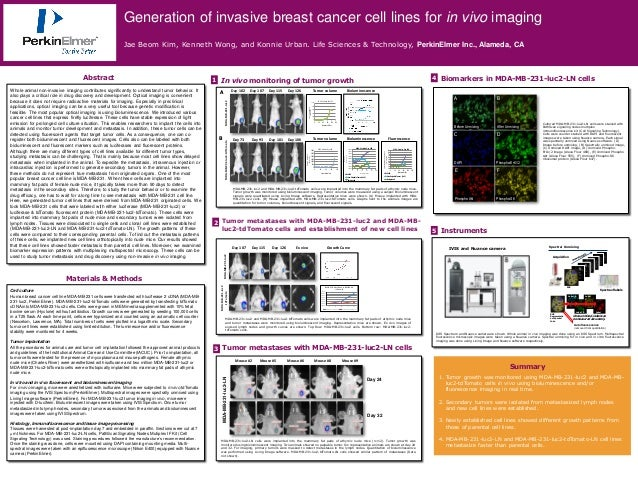 Generation of invasive breast cancer cell lines for in vivo imaging                                                       ...
