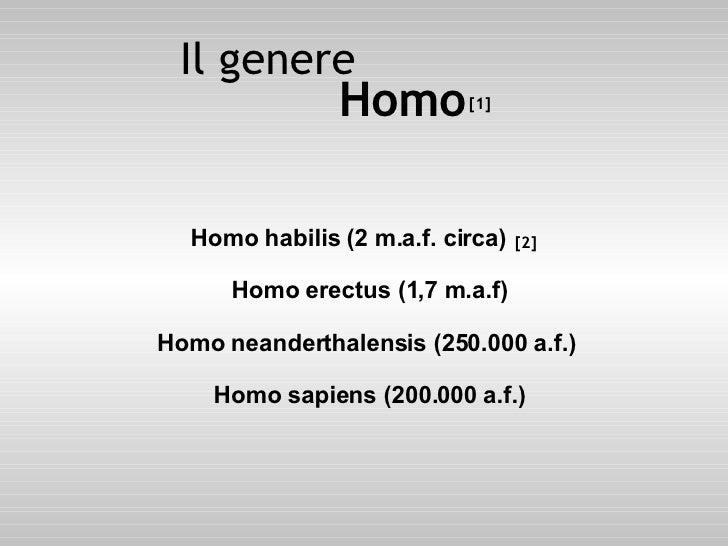 <ul><li>Homo habilis (2 m.a.f. circa) Homo erectus (1,7 m.a.f) Homo neanderthalensis (250.000 a.f.)  Homo sapiens (200.000...