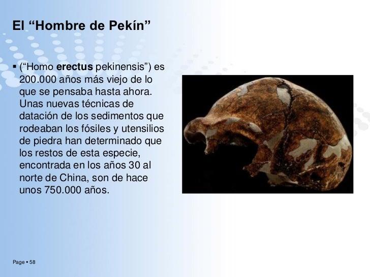 """Resultado de imagen de Los restos del """"Hombre de Pekín"""""""