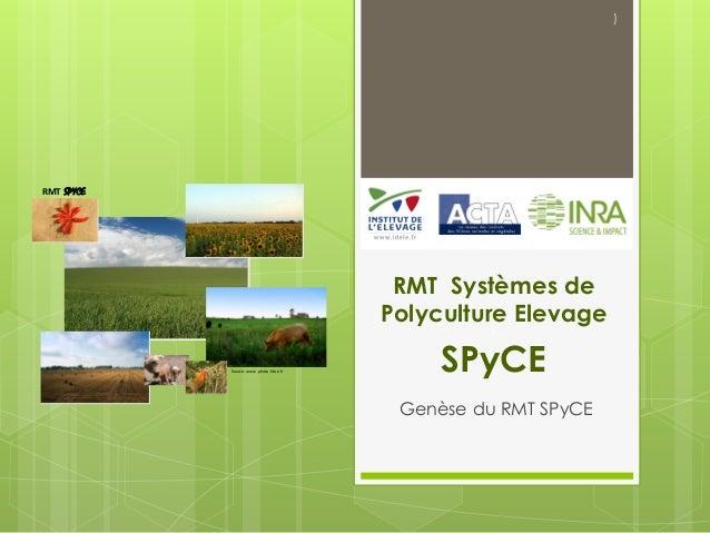 RMT Systèmes de Polyculture Elevage / SPyCE Genèse du RMT SPyCE ) Source:www.photo-libre.fr RMT SPYCE