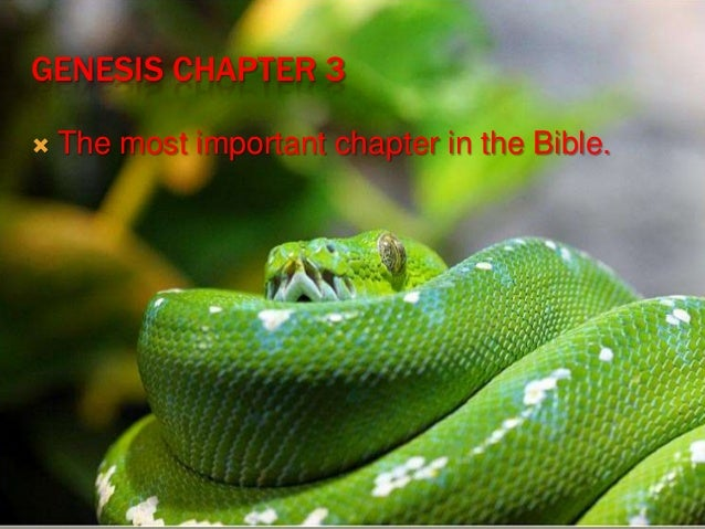 the fall of mankind into sin in chapter three of genesis As time progressed and sin increased, man eventually digressed so far that he started believing in and worshipping other so-called gods a theology of the fall in genesis 3 and the ancient near east how does it fit into the interpretation then, in genesis 3:22.