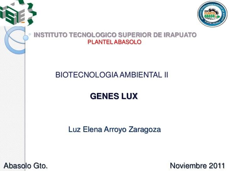 INSTITUTO TECNOLOGICO SUPERIOR DE IRAPUATO                      PLANTEL ABASOLO               BIOTECNOLOGIA AMBIENTAL II  ...