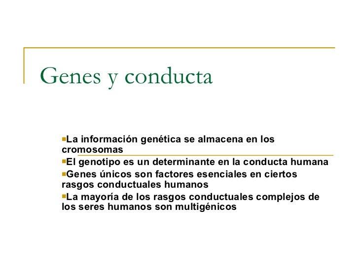 Genes y conducta <ul><li>La información genética se almacena en los cromosomas </li></ul><ul><li>El genotipo es un determi...