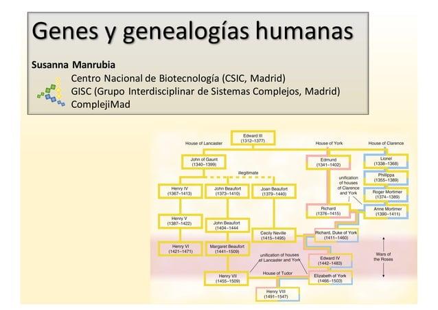 Genes  y  genealogías  humanas Susanna  Manrubia Centro  Nacional  de  Biotecnología  (CSIC,  Madrid) GI...