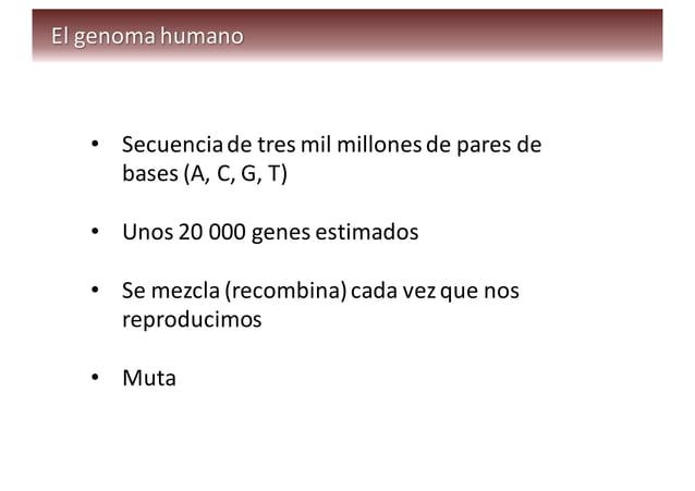 • Los  genomas  de  dos  humanos  tienen  unos  dos  millones  de   nucleótidos  (A,  C,  G,  ...