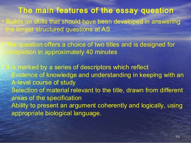 main features of the essay