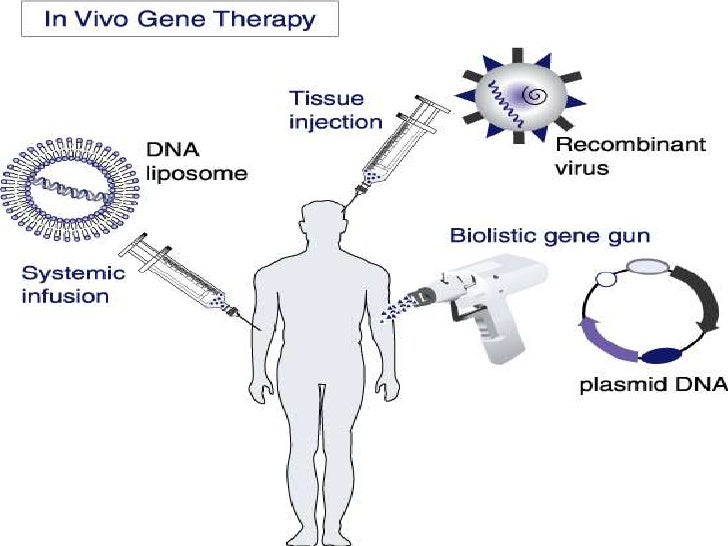 the types of gene therapy that cures diseases Diseases targeted by gene therapy the vast majority (827%)  most of the clinical trials in gene therapy have been aimed at the treatment of cancer (652% of all gene therapy trials) many different cancers have been targeted throughout the years,  the ultimate aim in treating monogenic diseases by gene therapy is the correction of the.