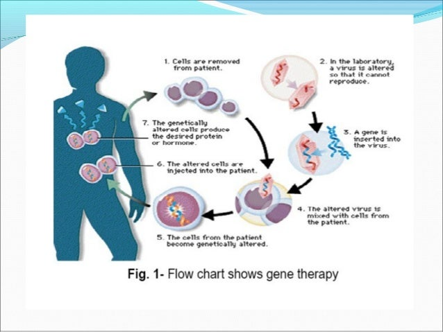 Gene therapy 6 principle of gene therapy ccuart Gallery